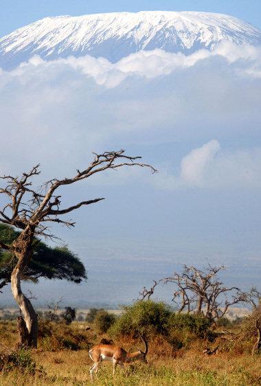 TR0413_kilimanjaro1_04-13-08_PB9M5U2